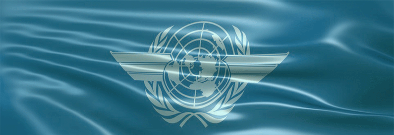 ICAO Council Informal Briefing on ACVFFI